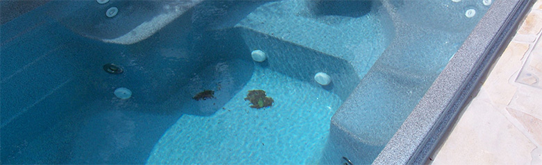 swimmingpoolreinigung. Black Bedroom Furniture Sets. Home Design Ideas